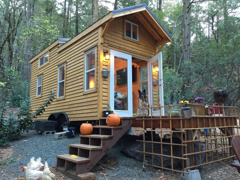 Year One in our Tiny House: A Reflection